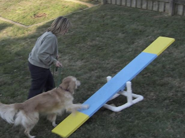 HOW TO BUILD A 3-PART DOG AGILITY COURSEBuild 3-part obstacle course: a climbing wall, teeter-totter and weave sticks.