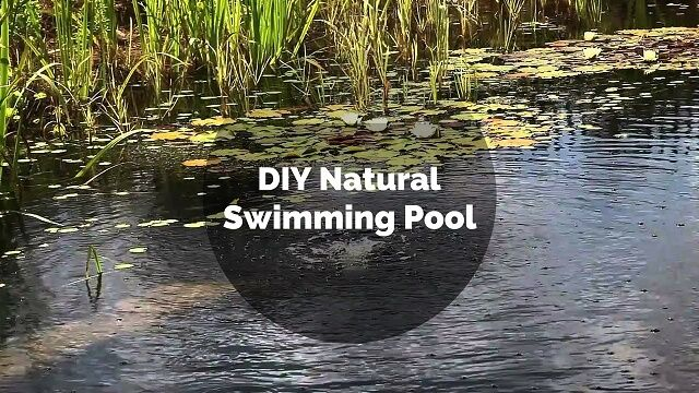 The 25 Best Diy Swimming Pool Ideas On Pinterest Diy Pool Diy In Ground Pool And Container Pool