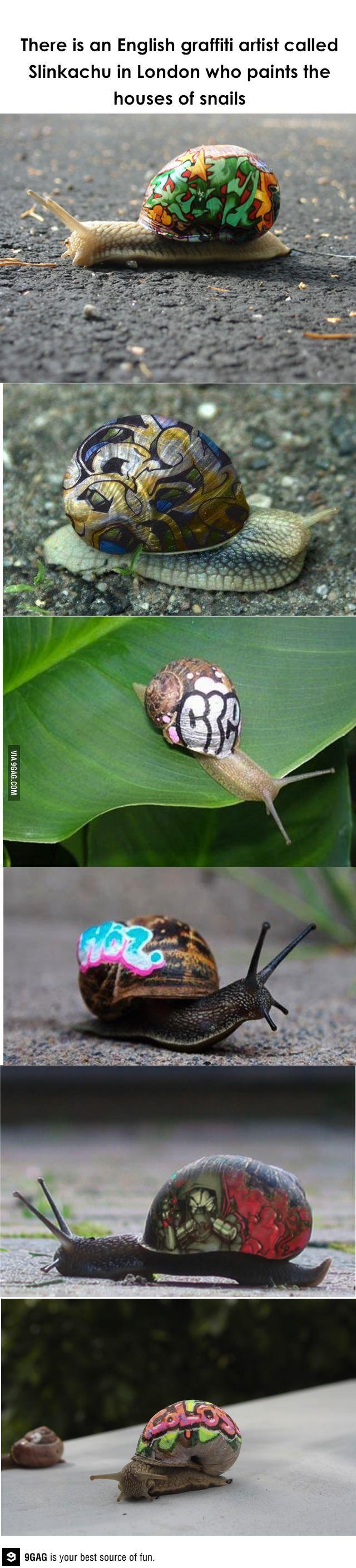 Snail graffiti