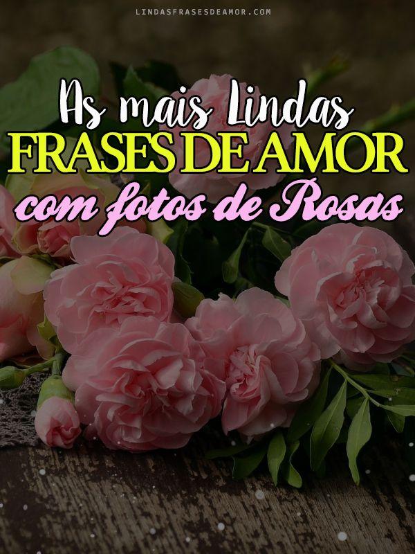 Frases De Amor Com Fotos De Rosas Frases De Amor Com Flores