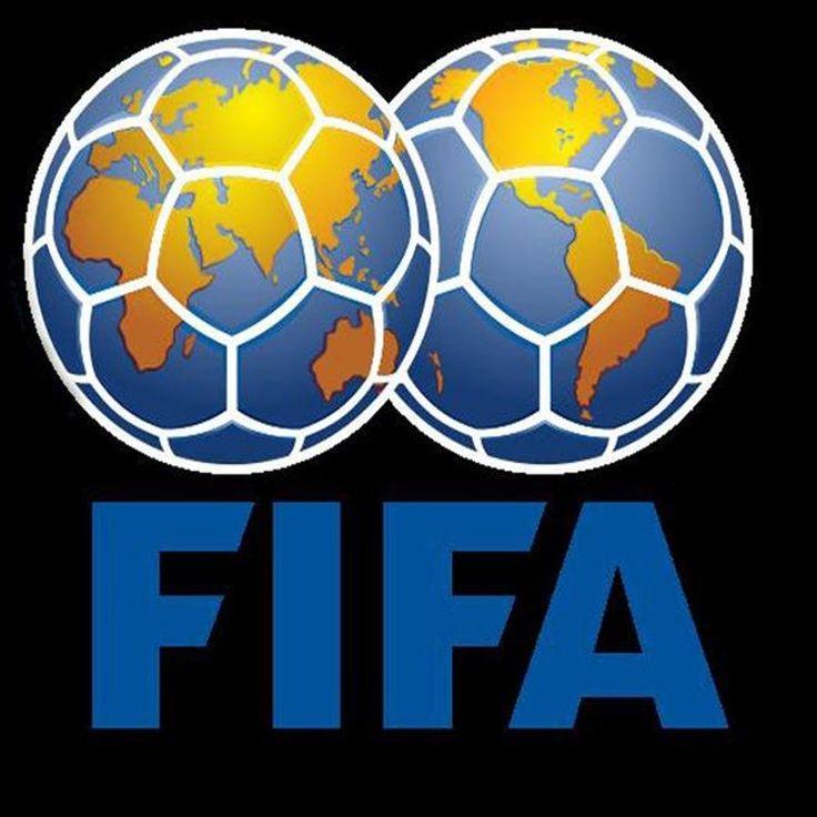 CAMEROUN :: Lettre de la Fifa : La riposte des « opposants » :: CAMEROON