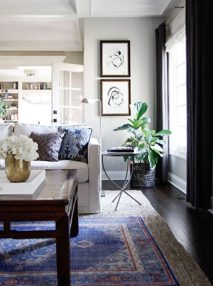 310 best living-dining room in silver-grey, blue, and green images