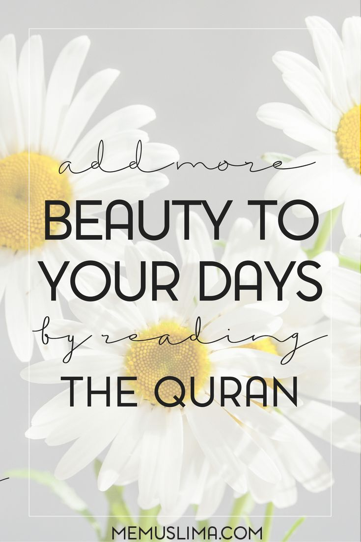 Want to add more beauty to your day? Read the Quran!