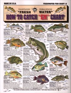 fish chart with info on how to catch them.