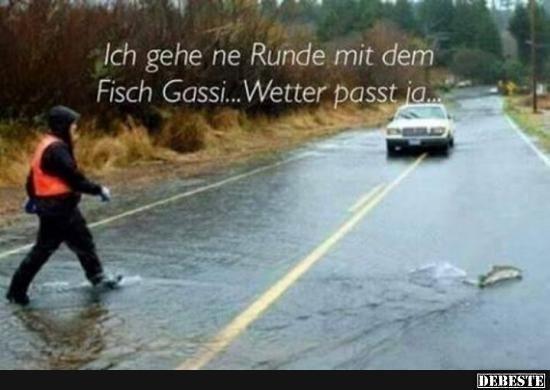 Ich gehe ne Runde mit dem Fisch Gassi.. | Lustige Bilder, Sprüche, Witze, echt lustig