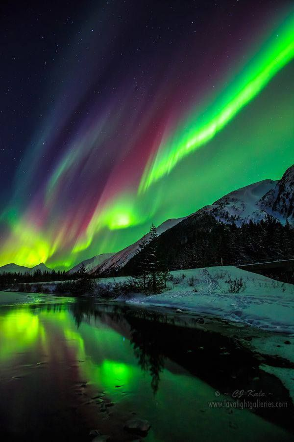 """Aurora Borealis or better known as the """"Northern Lights"""". We live lived in Alaska for 4 years while serving in the US Army. A very beautiful place. #SkyBeutiful"""