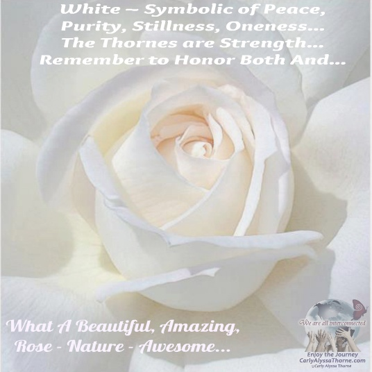 White flowers images with quotes siewalls white flowers quotes images flower decoration ideas mightylinksfo