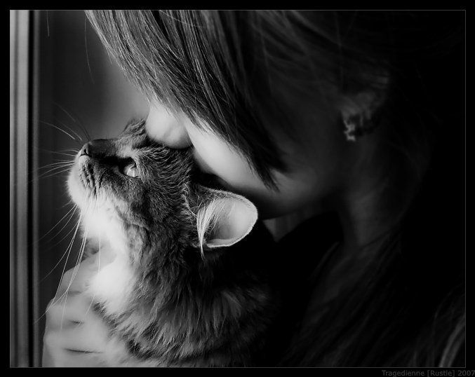 People who love cats have some of the biggest hearts around.: Cat Kittens Purrrrrrrrrrrr, Cat Paw, Kitty Cat, Best Friends, Animal Photography, Kitty Kitty, Cat Cat, Catskitten Purrrrrrrrrrrr, Cat Ii