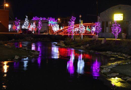 Purple Christmas lights in trees