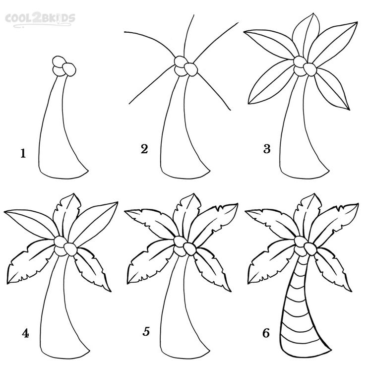 How To Draw a Palm Tree Step by Step Drawing Tutorial with Pictures   Cool2bKids