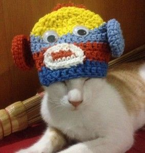 pola-topi-kucing-crochet