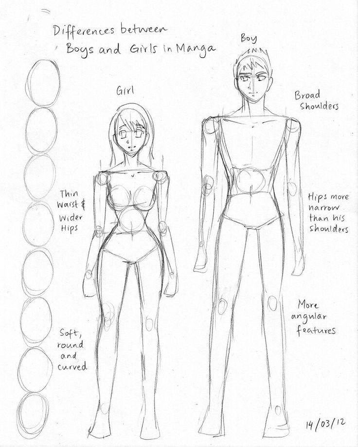 How To Draw Manga Anatomy Differences Artsy Fartsy Pinterest