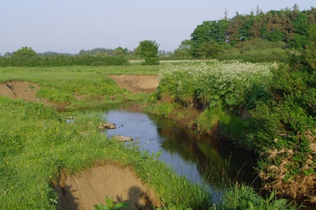 This is the Wansbeck River, #Northumberland. Just up stream from the #Marlish Farm. www.marlish.co.uk