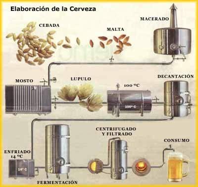 Proceso de elaboración de cerveza artesanal, cuatro ingredientes esenciales que no pueden faltar en  la elaboración: agua,  cebada, lúpulo y malta son fundamentales para una una buena cocción.