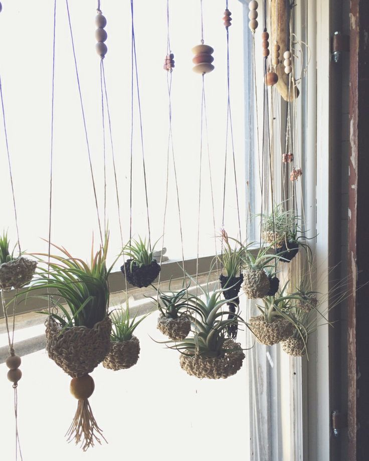 auraria crocheted air plant hangers, part of the fiber:shop pop-up at hey rooster general store.