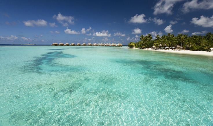 29 novembre 2013: Vakarufalhi, Maldive. In questi giorni i nostri ospiti stanno godendo di giornate meravigliose…