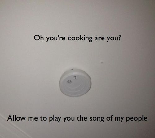 Oh, you're cooking are you?  Allow me to play you the song of my people.: Funny Things, Handpicked Humor, Allow, Awesome, Mine Plays, Fire Alarm, Morning, Cooking Song, Chrissy S Stuff
