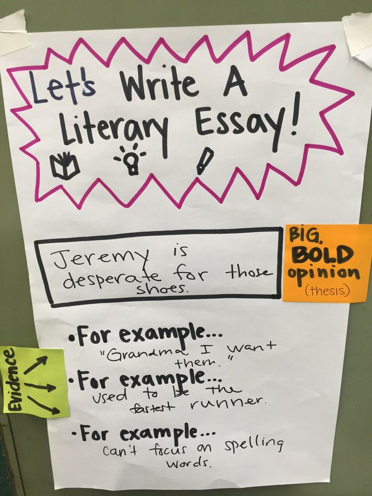 literary essay writing