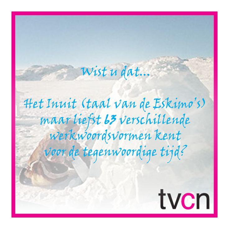 #Taalweetjes   TVcN Tolk- en Vertaalcentrum Nederland #Inuit #Eskimo's #taal #werkwoordsvormen