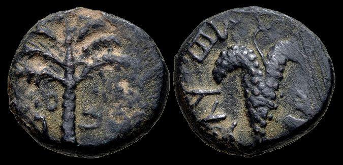 "JUDAEAN BRONZE DENOMINATION OF THE BAR KOKHBA REVOLT, AD 132-135 Obverse: ""Jerusalem"" in Hebrew, palm tree.Reverse: ""For the freedom of Jerusalem"" in Hebrew, grape bunch on vine."