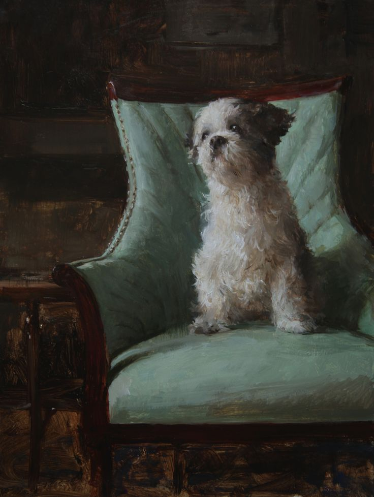 Little shaggy dog in blue chair, commissioned portrait by Michael Klein