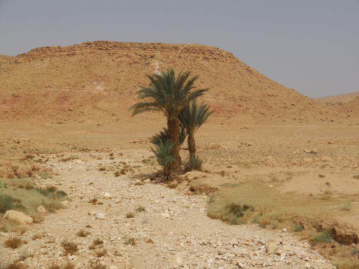 photos prise au alentour d ait benhaddou sud du maroc