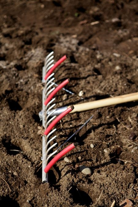 seed bed preparation rake from johnnys seeds