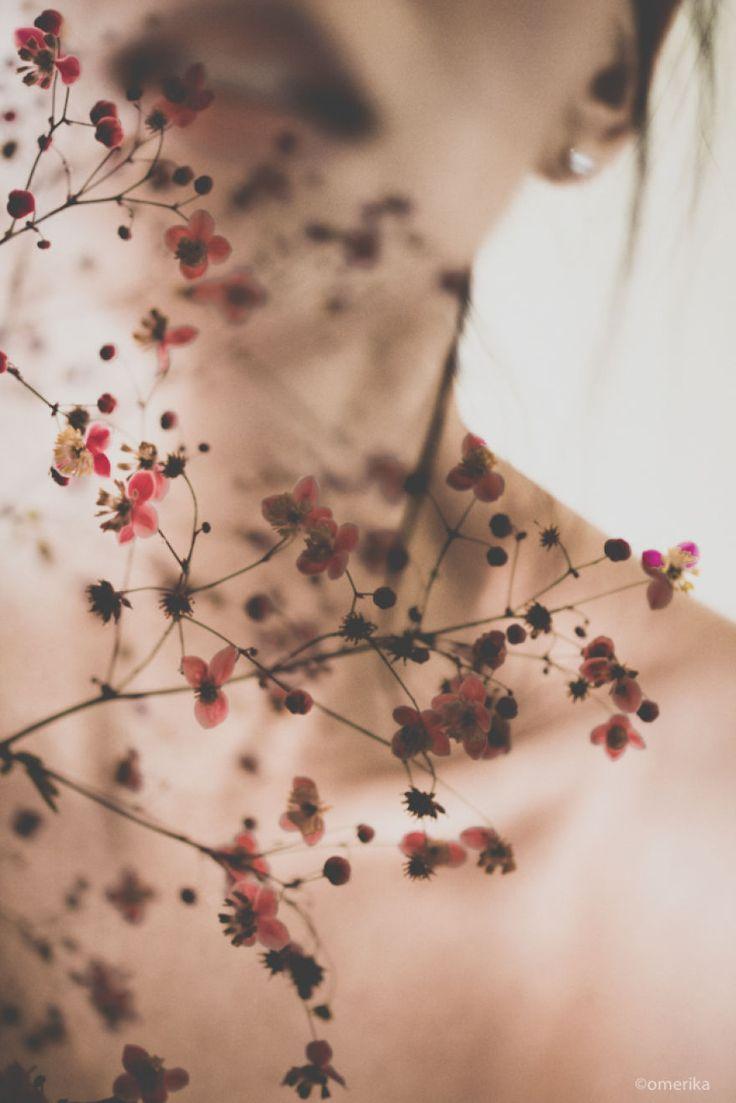 Versteckt sich hinter den Blumen –