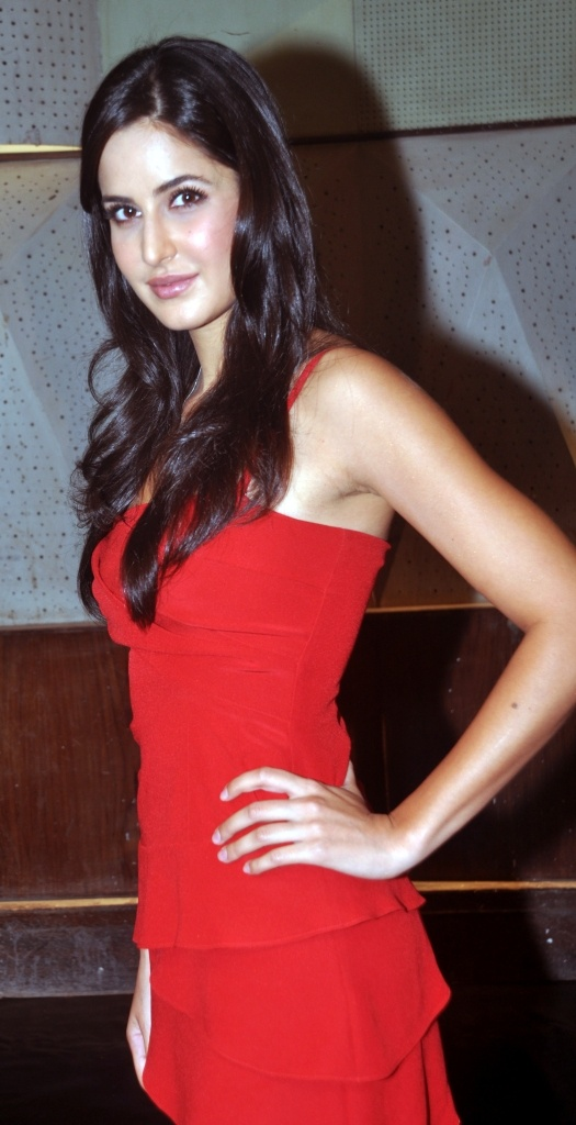 Katrina Kaif! Just perfect!