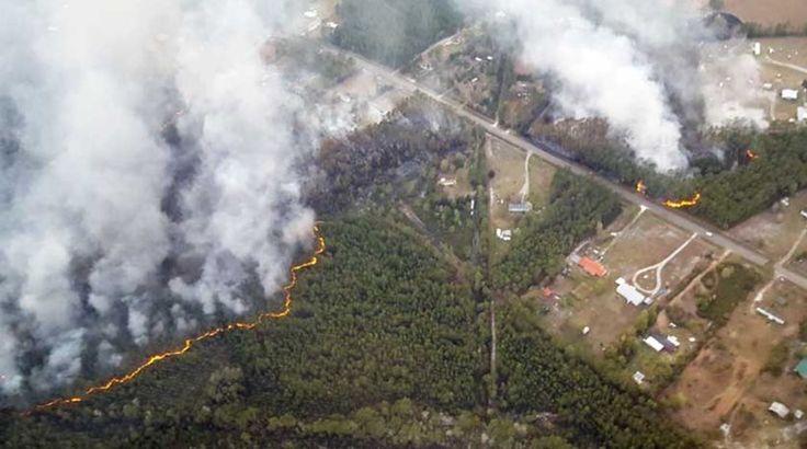 Η Φλόριντα στις φλόγες: 100 φωτιές μαίνονται στην πολιτεία