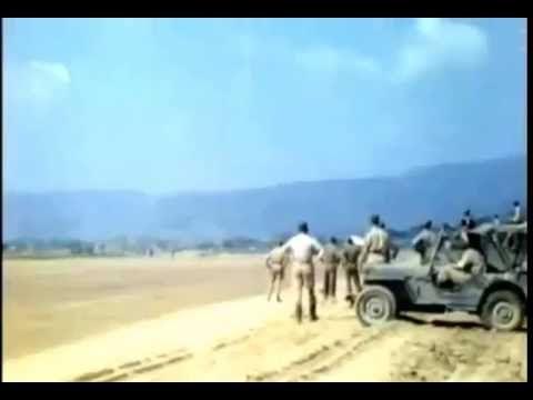 1944 world war 2 italy