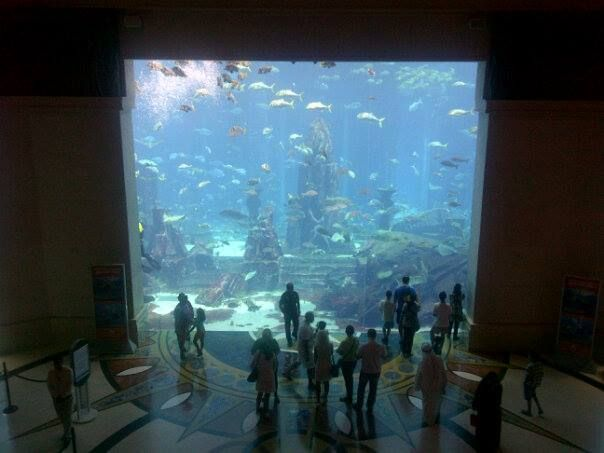 Aquaventure - aquarium raksasa di dalam hotel #dBCNinDubai #OriflameGC2013