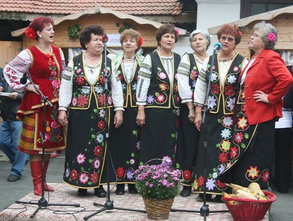 Ansamblul ucrainenilor Zadunaiska Sici/Ukrainian Ensemble Zadunaiska Sici