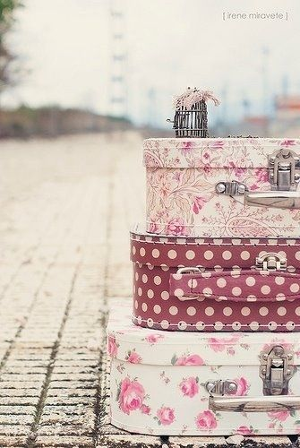 ♡Stay Gold Always♡ // #pink #suitcases #floral