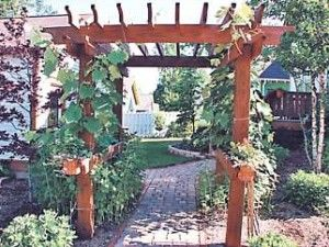 Garden Ideas On A Budget | right landscape can be simple front yard landscaping ideas on a budget ...