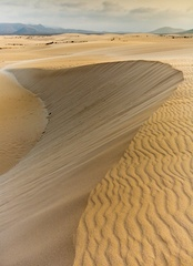 Dunas de Corralejo - Fuerteventura - was here last week.  Laurence of Arabia, eat your heart out.