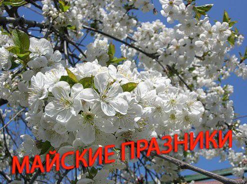 майские праздники картинка