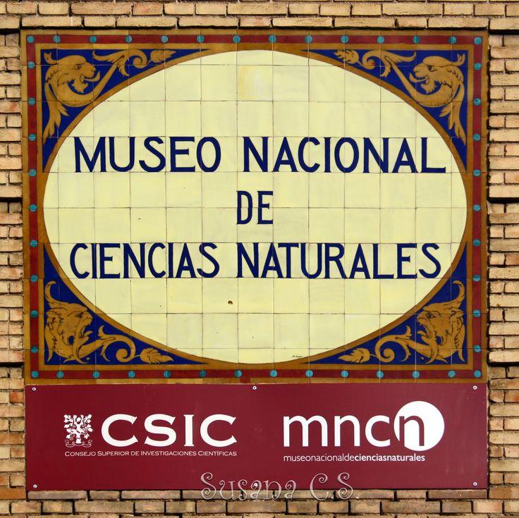 Museo Nacional de Ciencias Naturales - Madrid Real Gabinete