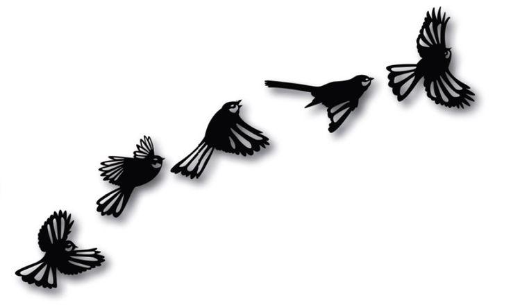 Fantails in flight