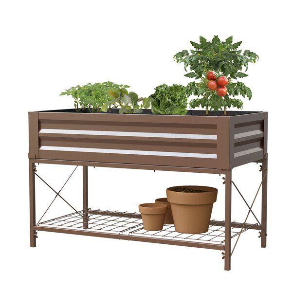 Makenna 4 Ft X 2 Ft Steel Raised Garden In 2020 With Images Raised Garden Beds Raised Garden Cedar Raised Garden