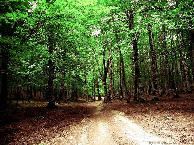 Il Parco Regionale Monti Simbruini - Subiaco - Lazio - Italy