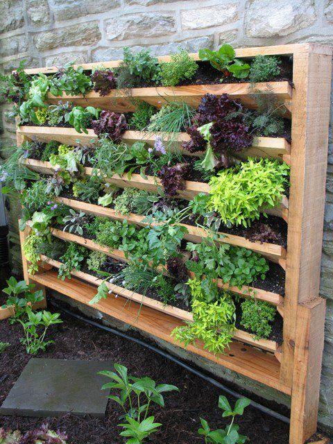 20 ausgezeichnete DIY Beispiele, wie man schönen vertikalen Garten macht