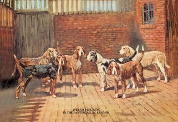 Welsh Hounds 12x18 Giclee on canvas