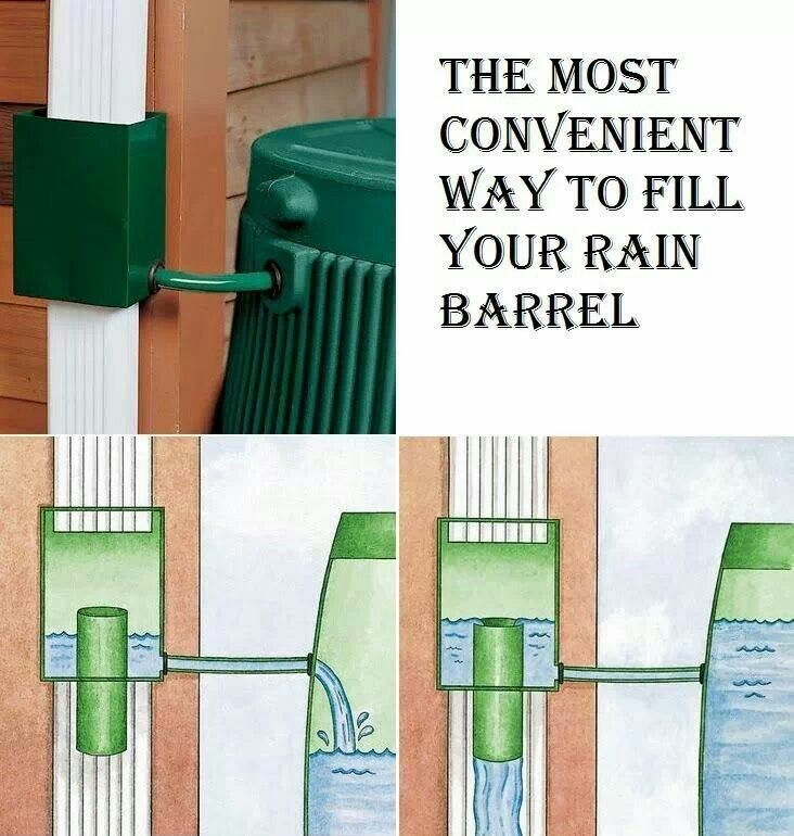 rain barrel idea gardens pinterest rain barrels. Black Bedroom Furniture Sets. Home Design Ideas