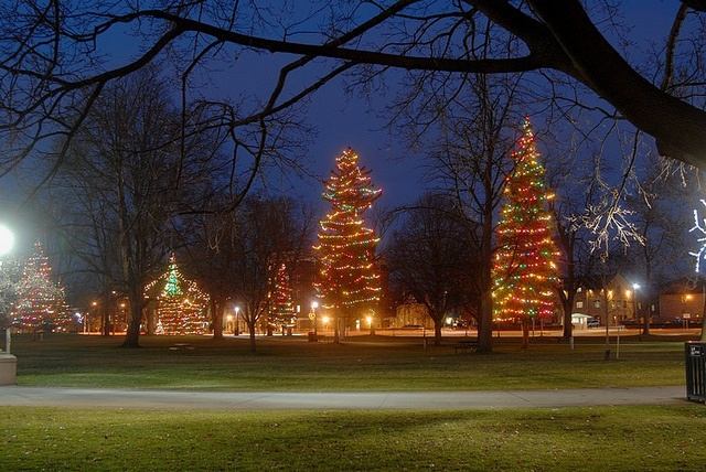 Christmas light display in Victoria Park, London, Ontario