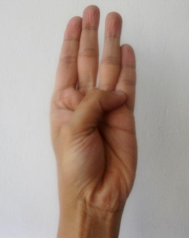 Tse Mudra - remedio para la depresión y una clave para desbloquear poderes intuitivos Tse Mudra se practica y recomendado por los monjes taoístas. También se conoce como el ejercicio de los tres secretos. Este mudra afecta al agua ...