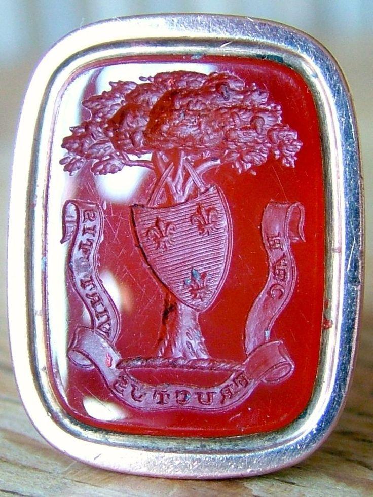 366 Best Images About Seal On Pinterest Lapis Lazuli