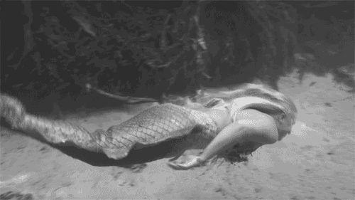 Freeman Unchained: Mermaid Origins & Mysteries
