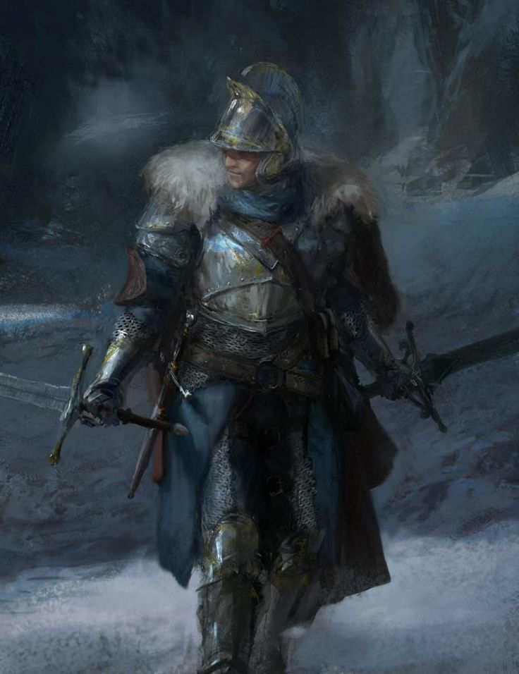 Male warrior in plate armor with two longswords.