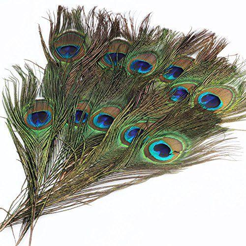 Amazon.co.jp | 10本セット 装飾用の羽根 孔雀の羽 23-30cm アクセサリー 羽根・手芸材料・パーツ【帽子の飾りやインテリアにも】 | ホビー 通販